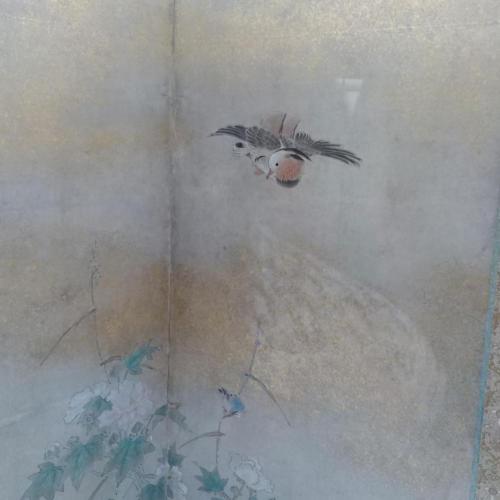 Цветы и птицы четырёх времён годаКано Цунэнобу